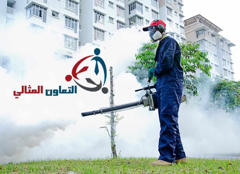 شركة مكافحة الصراصير بالبحرين